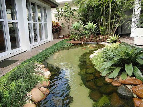 Jardins externos ap em decora o for Como criar carpas en estanques