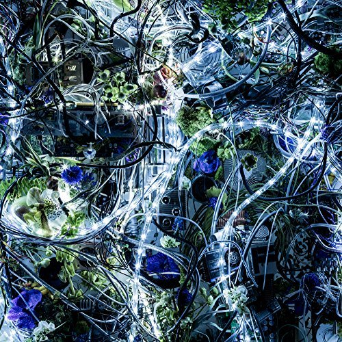 [Single] Aimer – ninelie (2016.05.11/MP3/RAR)