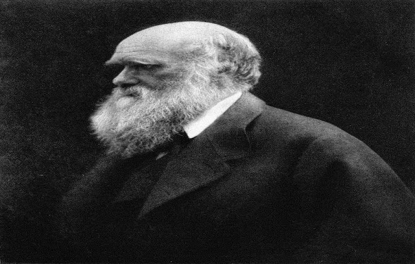 charles -darwin-biography-قصة-حياة-تشارلز-داروين