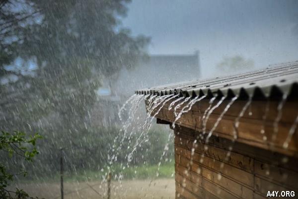 Mưa rơi trên mái nhà
