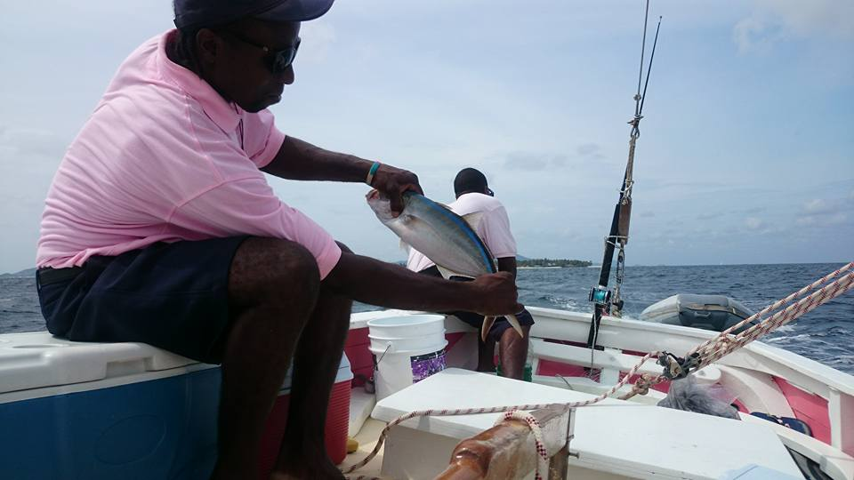 Catching Bar Jack fish in St Vincent and the Grenadines