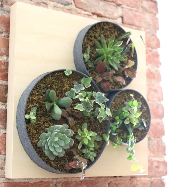 DIY Vertical Succulent Garden: EHowu0027s Ikea Lack Hack #ProjectThrowdown  Challenge | 17 Apart