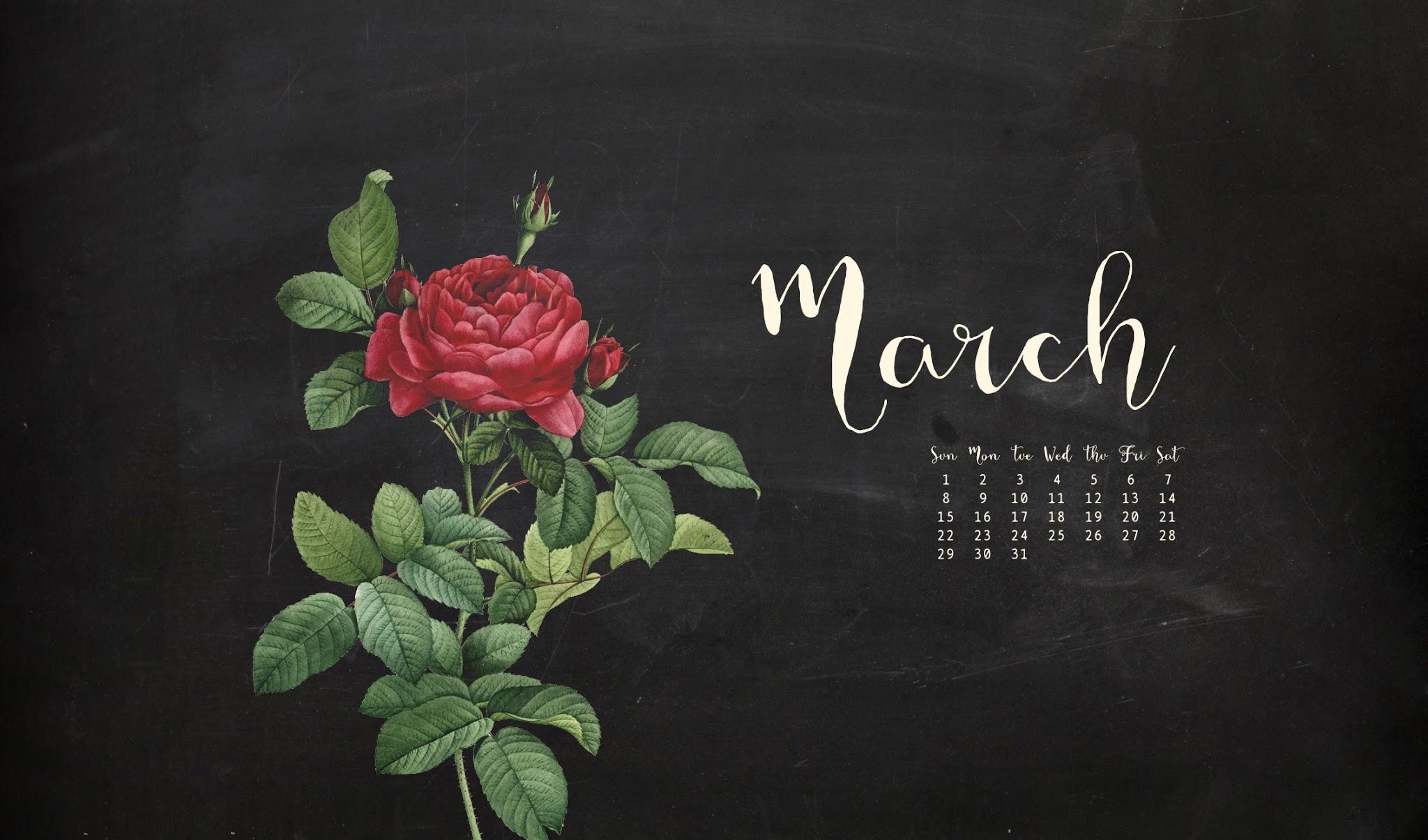 Forest dreams - March desktop wallpaper ...