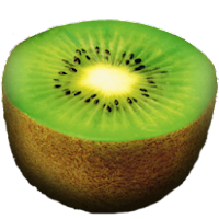 kiwi fruits icons 1