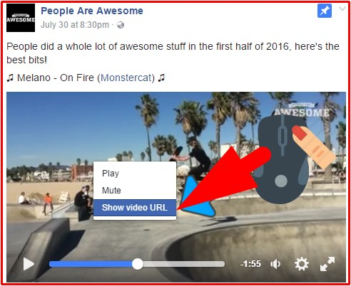 how to save a video from facebook