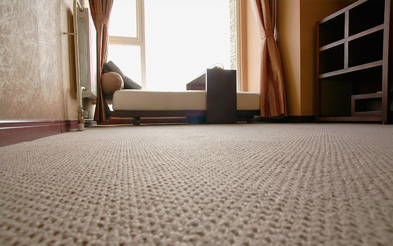 Best carpet for busy homes