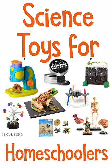 Kids' Science Toys for Homeschoolers // In Our Pond // Guaranteed to spark curiosity about the world around them and excite their imaginations.