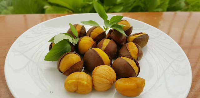 Trung Khanh Chestnut - specialty gift in Cao Bang 1