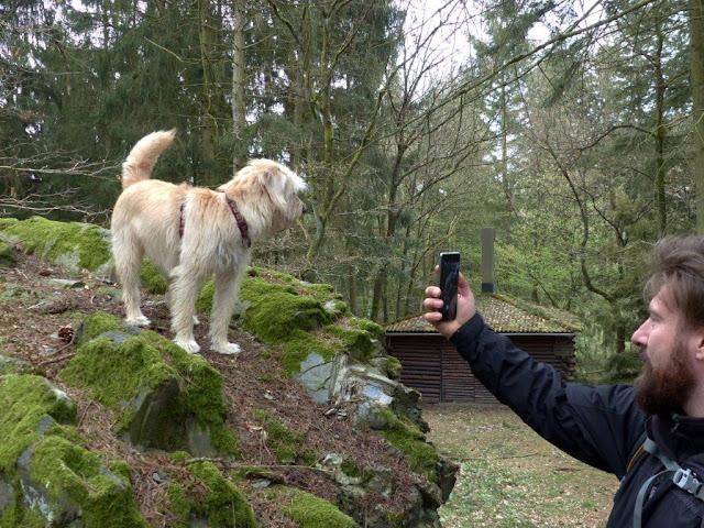 Hunsrück Urlaub Wanderurlaub mit Hund Ostern Traumschleifen Saar-Hunsrück-Steig Wasser Dichter Spuren