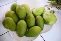 mangga muda untuk salad thailand