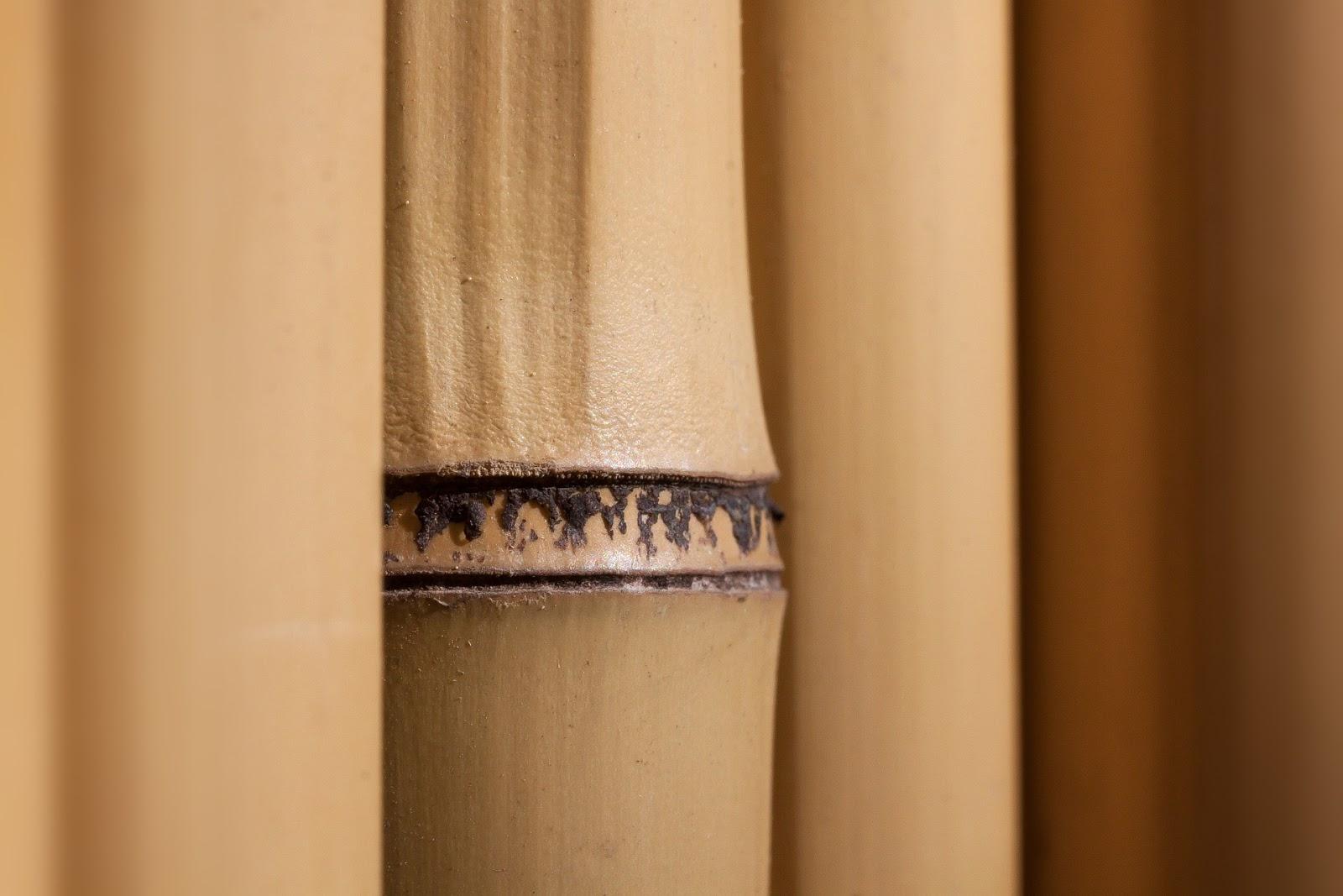 Badmöbel aus Bambus Holz: Erfahrungen und Empfehlungen für den Kauf