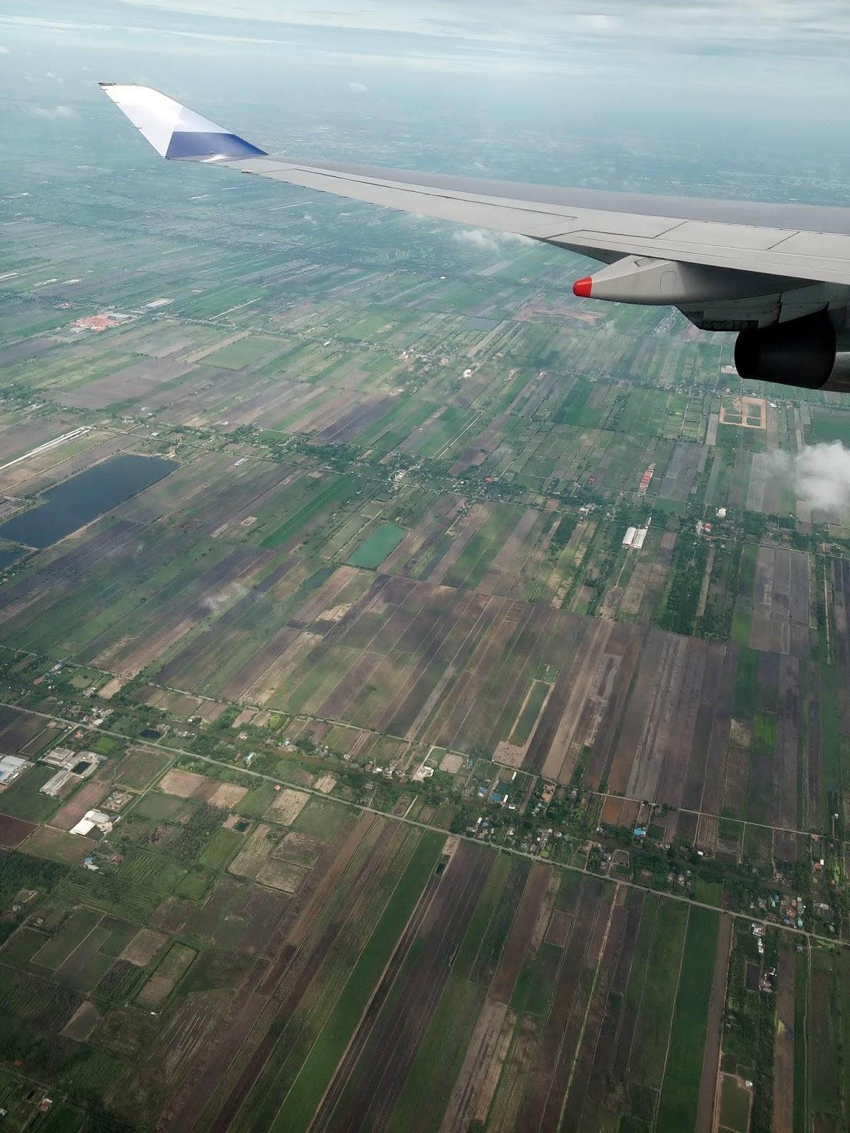 泰國-農田
