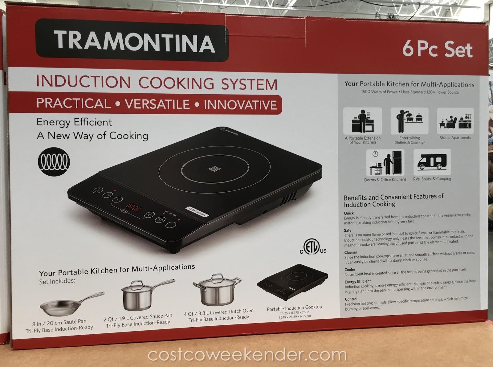 Costco induction range