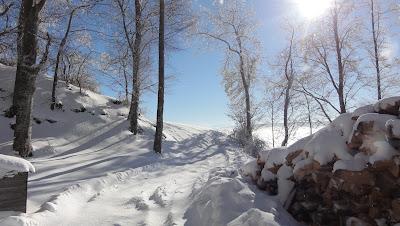 Verschneiter Weg auf dem Farisberg