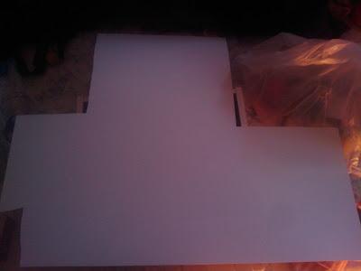 cartón proyecto