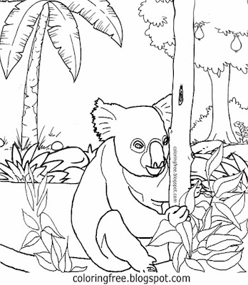 Local mammals of Australia cute koala printables Australian clipart colouring for kids to colour in