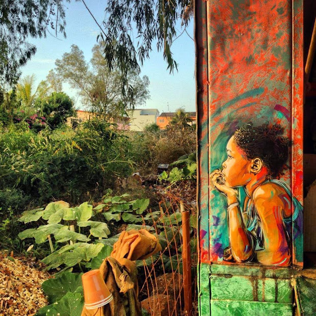 C215 Street Art - Saly & Mbour Senegal