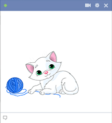 Cute white kitten for Facebook