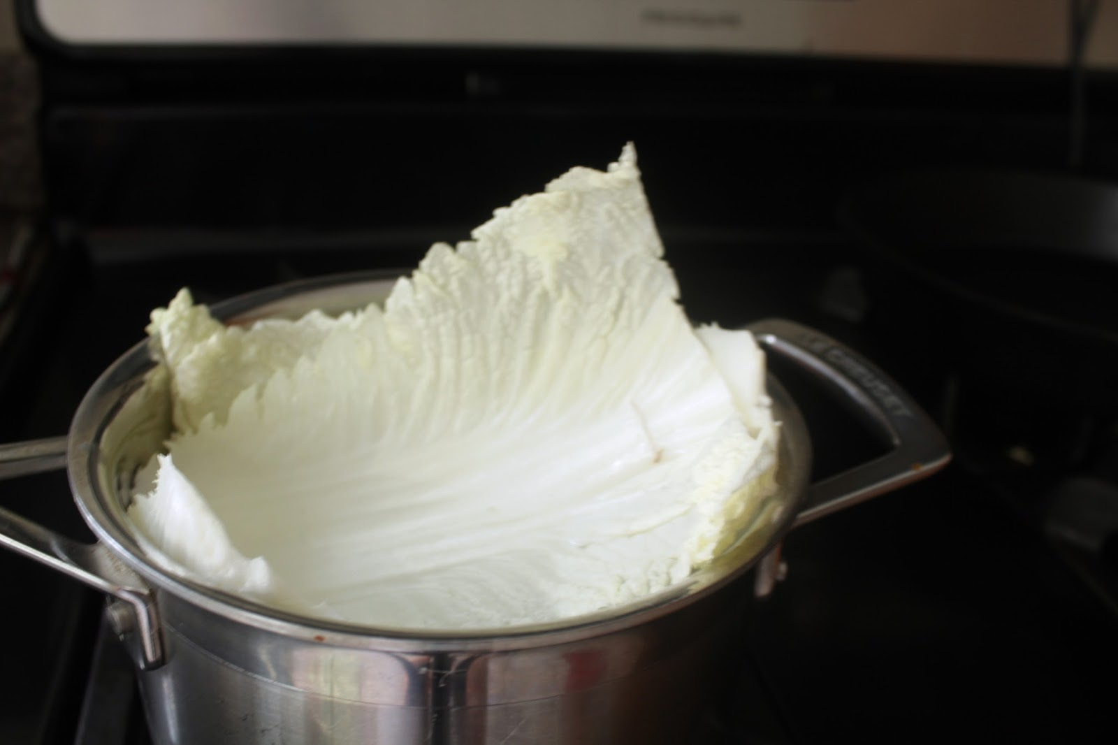 Crock Pot Shredded Italian Beef Cabbage Rolls