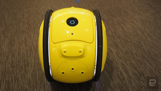 The Gita is Your Personal Robot Porter