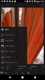 Lightroom Mobile App Editing Interface
