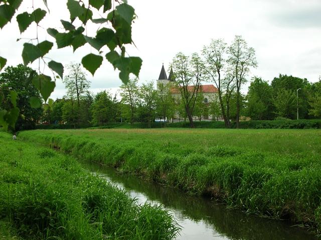kościół, Babimost, trawa, liście