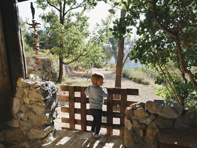 Cute Toddler in Nature