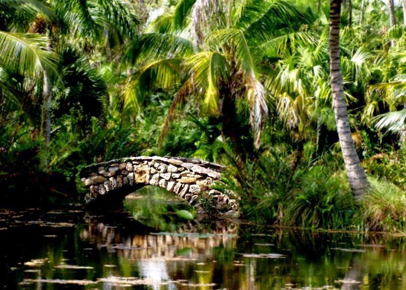 Mckee jungle garden old highway notes - Mckee botanical gardens vero beach ...
