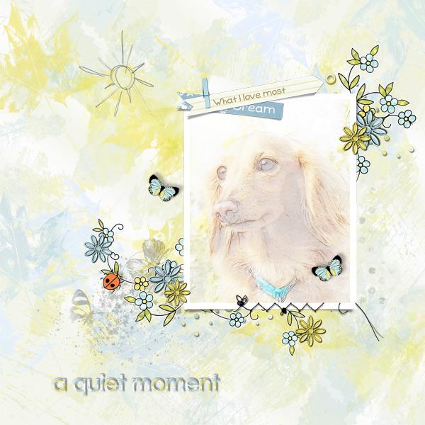 DSB  a quiet moment
