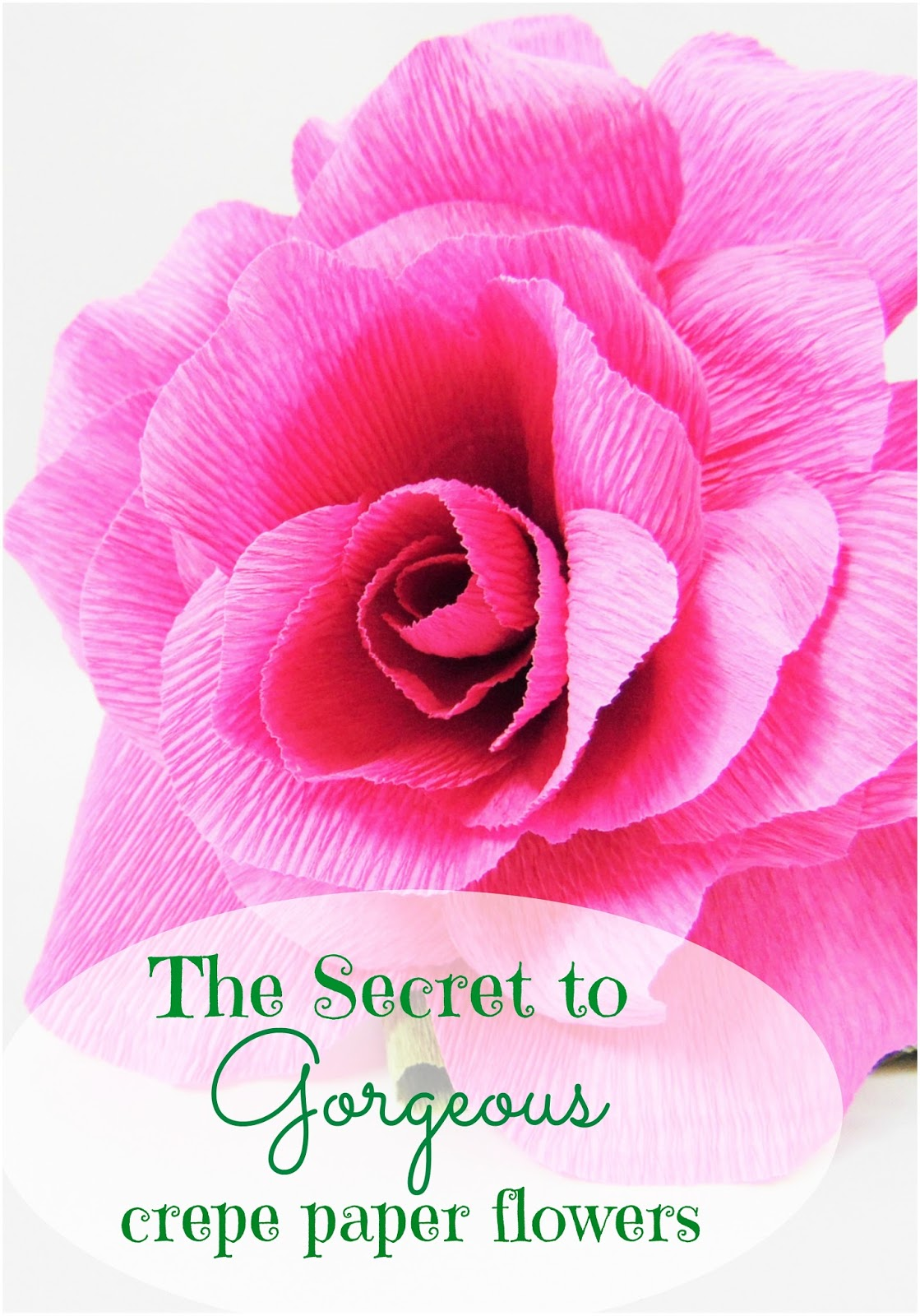 The secret to perfect crepe paper flowers catching colorflies the secret to perfect crepe paper flowers mightylinksfo
