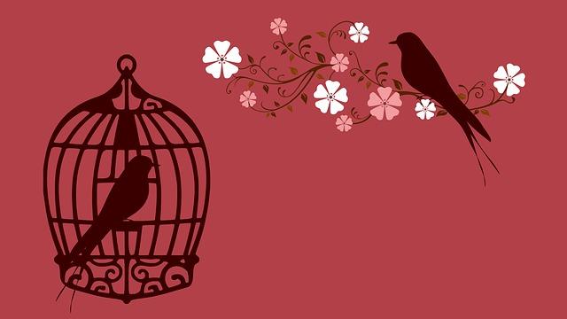 prisão, reflexão, vida, pensamentos, crônicas, Pensamentos Valem Ouro