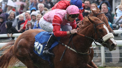 Irish 1000 Guineas Hope For Kevin Ryan