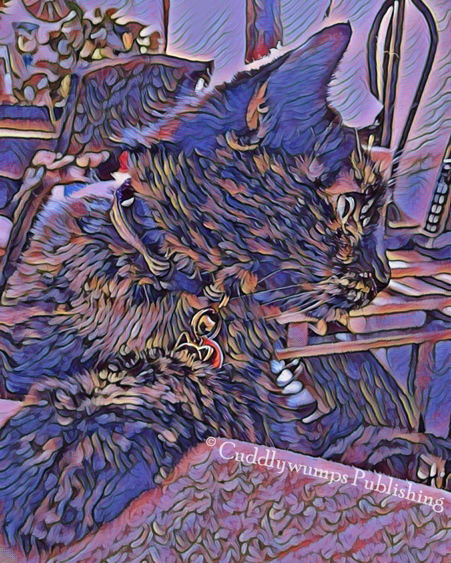 The Cuddlywumps Cat Chronicles: Caturday Art: Paisley in Purple