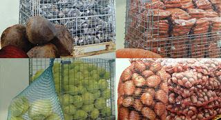 хранение картофеля, капусты, моркови, свеклы
