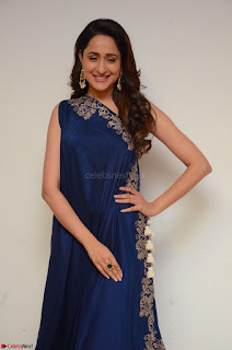 Pragya Jaiswal in beautiful Blue Gown Spicy Latest Pics February 2017 090.JPG