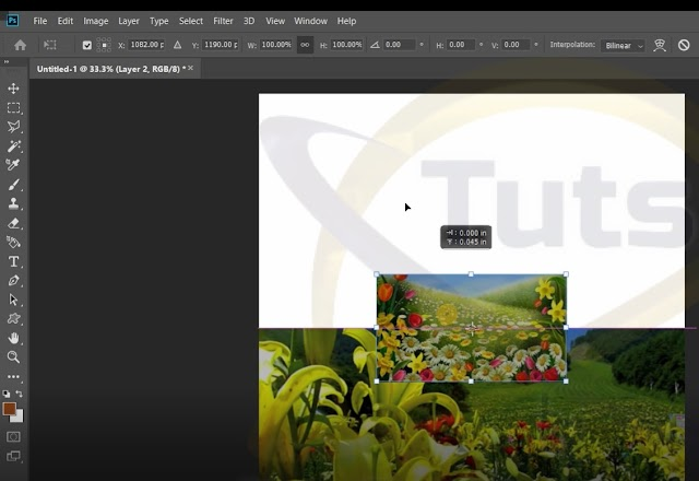How to Blend Multiple Pictures Automatically in Adobe Photoshop CC