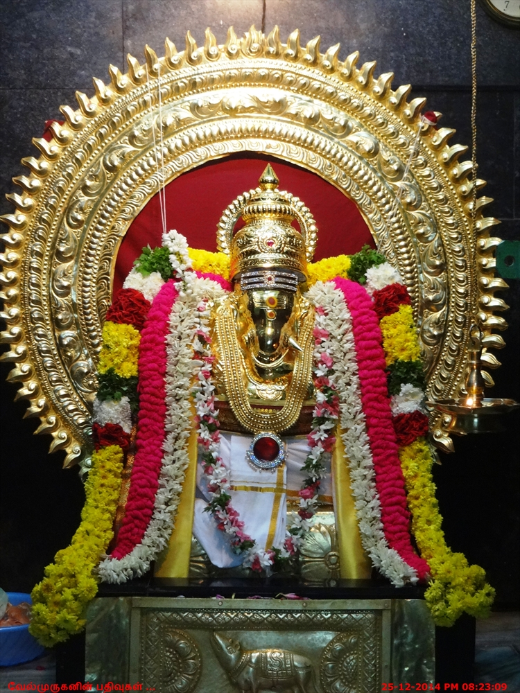 Sri Selva Vinayagar Neyveli