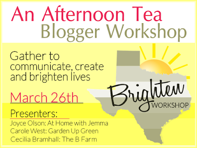 ticket-on-sale-blogger-workshop-tea-jemma