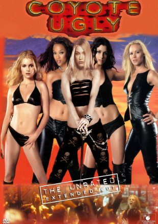 Coyote Ugly 2000 Dual Audio Hindi 300MB BluRay 480p x264 ESubs Download