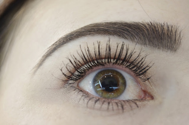 False Lash Telescopic L'oreal review