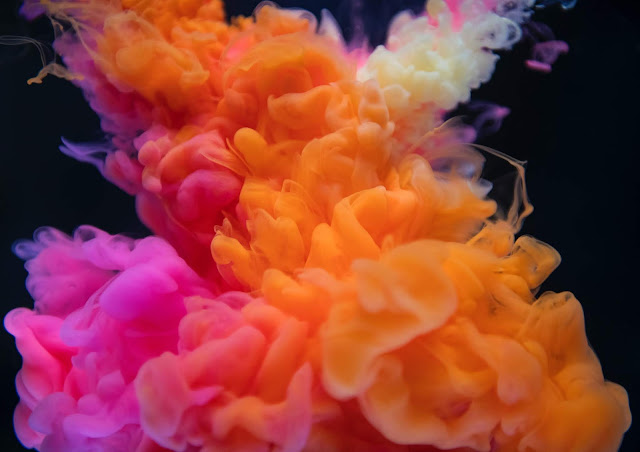 BEST PLACES TO VISIT HOLI