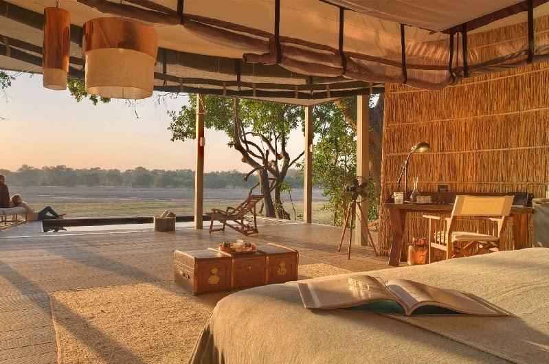 Safari Style Elegantly Simplistic 5