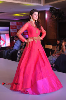 South Indian Celebrities Pos at Love For Handloom Collection Fashion Show  0129.jpg