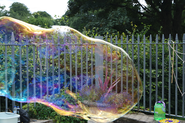 a 5 foot long bubble in a garden, swirling with rainbow colours