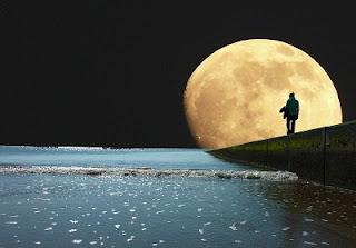 Mare luna riflesso notte