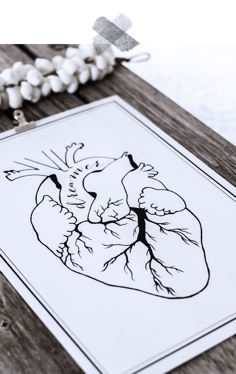 print, art, art print, anatomic heart, anatomiskt hjärta, dreamer, quote