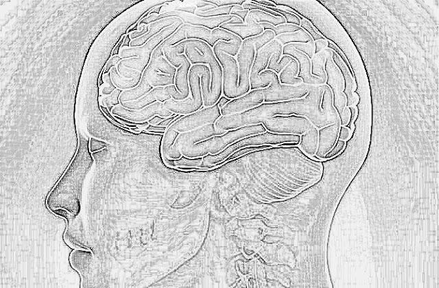 Damag ki kamzoori ka ilaj,Home treatment for Brain at home