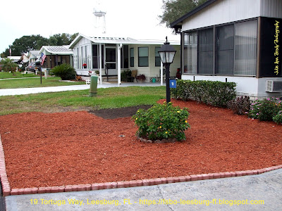 Creating Curb Appeal with a Front Yard Garden Fourth Day