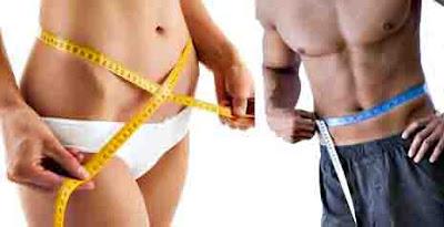 Metabolismo rápido quema de grasa