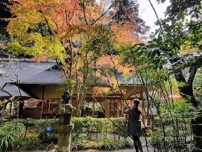 寺內一景,在這裡的餐廳吃飯應該也是很享受